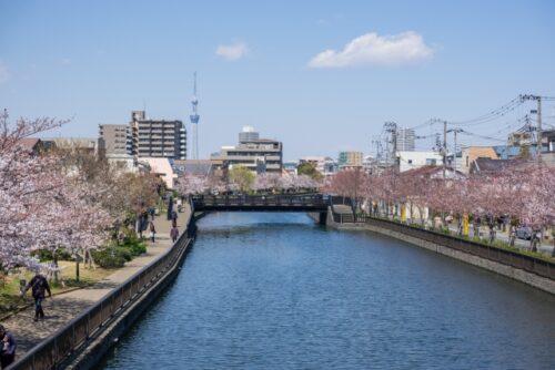 八千代市の新川遊歩道
